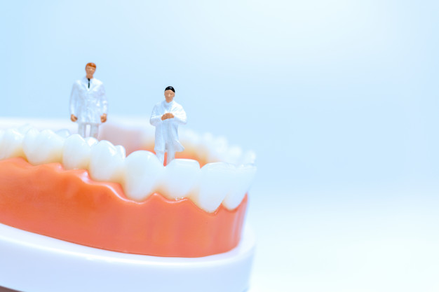 miniature-dentists-observing-discussing-about-human-teeth-with-gums_28710-1832.jpg